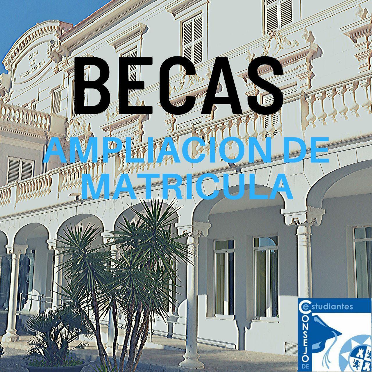 Becas De Ampliación De Matrícula.